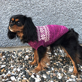 Bailey & Bella  Nordic Sweater Pink