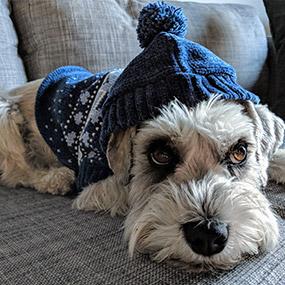 Bailey & Bella  Chenille Sweater Blue
