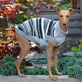 Bailey & Bella  Stripe Sweater Grey
