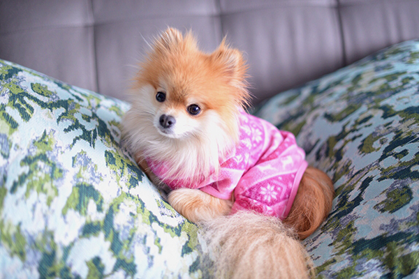 Bailey & Bella Fleece PJs Pink