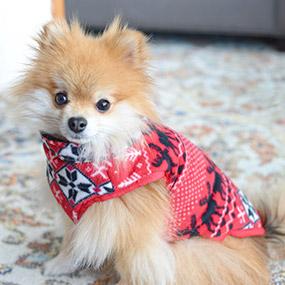 Bailey & Bella Vest with Zipper Red