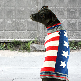 Bailey & Bella USA Sweater