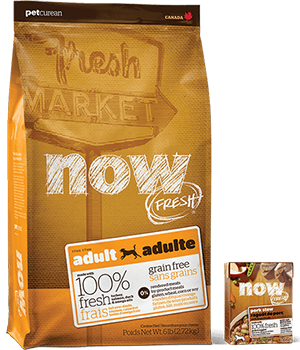 Now Fresh Adult Grain Free food