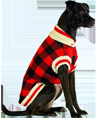 Bailey and Bella Buffalo Check Sweater