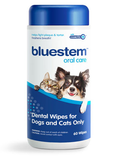 bluestem oral care dental wipes for Dogs and Cats Only