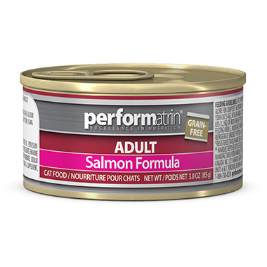 Adult Grain Free Salmon Formula
