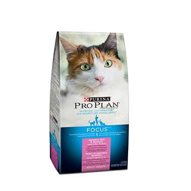 Petvalu Salmon Dry Cat Food