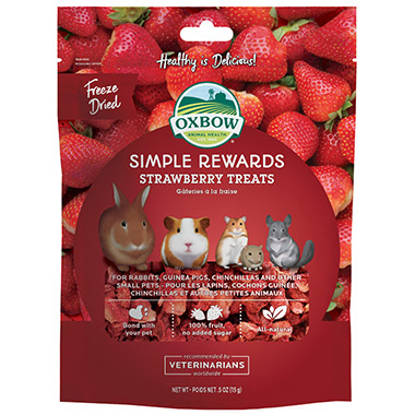 Simple Rewards Strawberry Treat