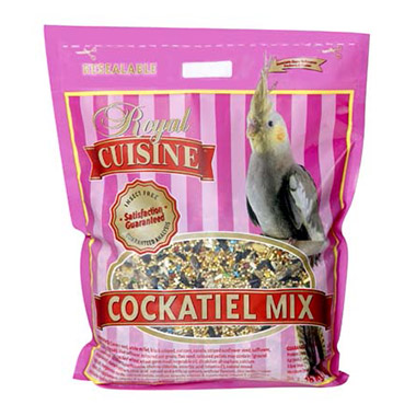 Cockatiel Mix