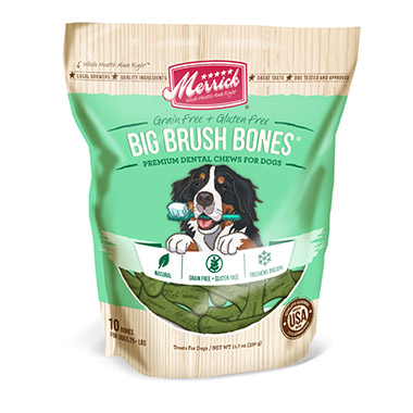 big-brush-dental-bone