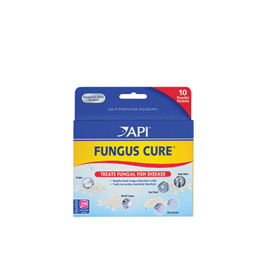 Fungus Cure Fish Medication