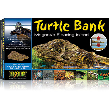 Turtle Bank Medium