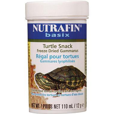turtle-snack