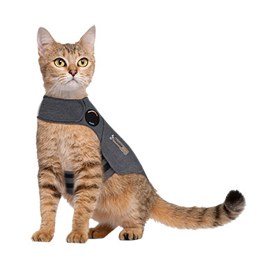 For Cats Heather Grey