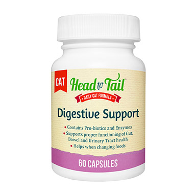 Digestive Support for Cats