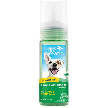 Fresh Breath Fresh Mint Foam