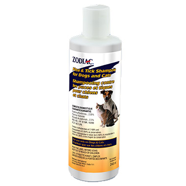 Flea & Tick Shampoo for Dogs & Cats