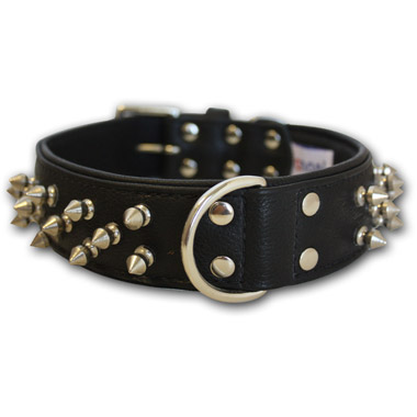 Amsterdam Dog Collar Leather Spiked Midnight Black