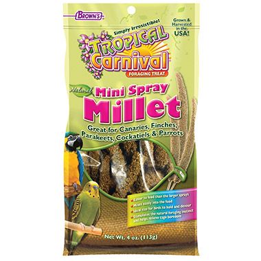 Natural Mini Millet Spray