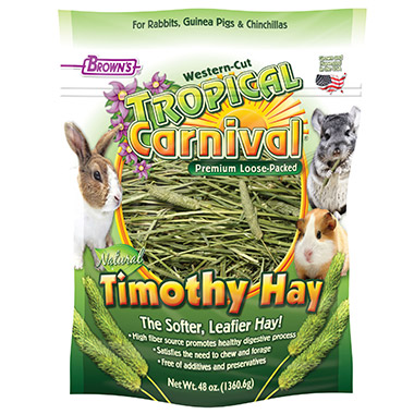 Tropical Carnival Loose Timothy Hay