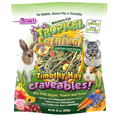 Tropical Carnival Timothy Hay Craveables
