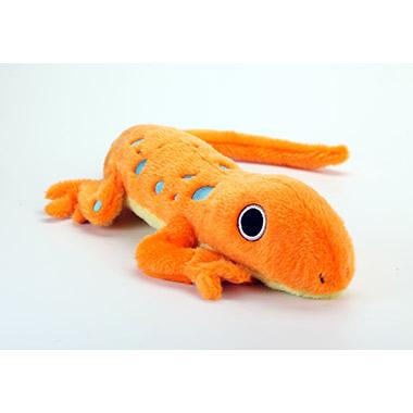 Amphibianz Gecko