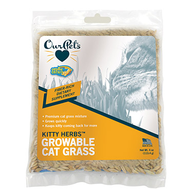 Catnip Kitty Herbs Growable Cat Treats