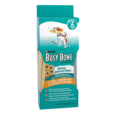 busy-bone-dental-smallmedium