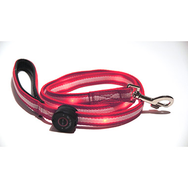 Red Leash 6ft