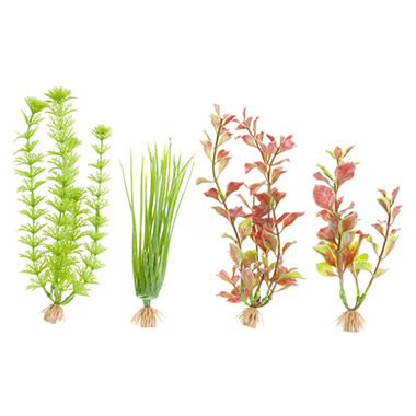 Red Ludwigia, Hairgrass and Ambuli Combo Pack Artificial Plants
