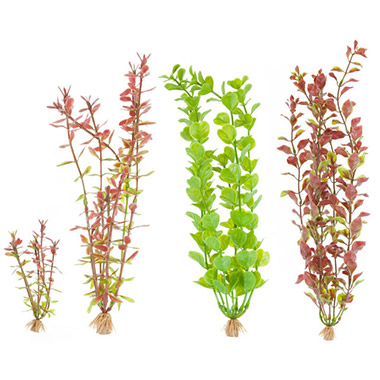 Rotala, Rotala, Moneywort and Red Ludwigia Combo Pack Artificial Plants