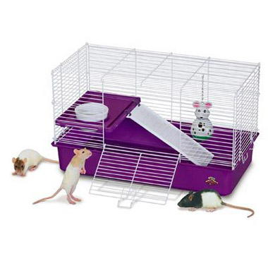 My First Home Rat Cage