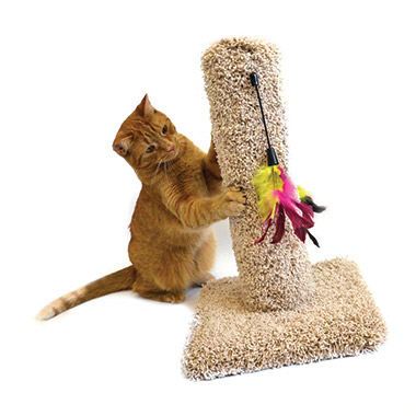 Cat Post with Toy