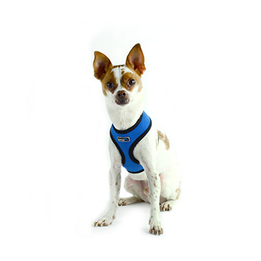 Air Mesh Harness Blue
