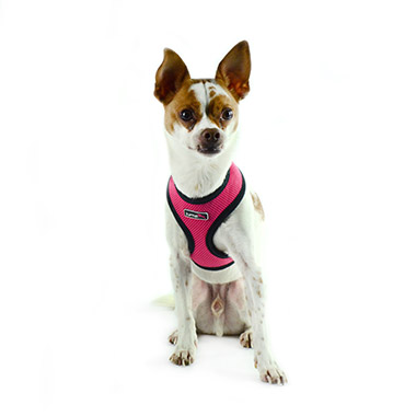 Air Mesh Harness Pink