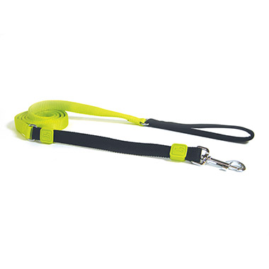"Bungee Leash 3/4"" Lime Green"