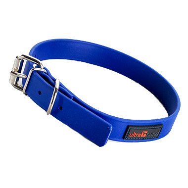 Play Collar 1 Inch Blue