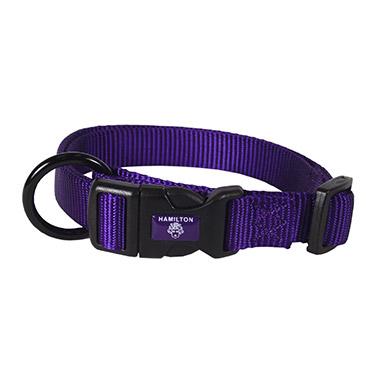 Adjustable Collar Purple