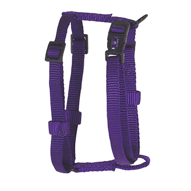Adjustable Harness Purple