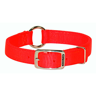Safety Orange Collar
