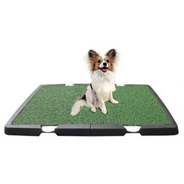 Indoor Dog Potty   90149   Pet Valu