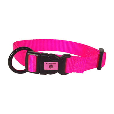 Adjustable Collar Hot Pink
