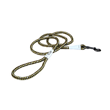 Reflective Braided Rope Snap Dog Leash - Fern