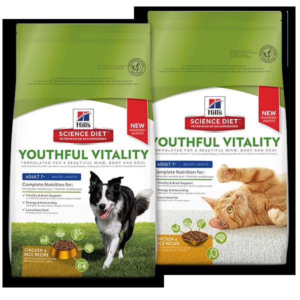 Science Diet Pv Cat Food
