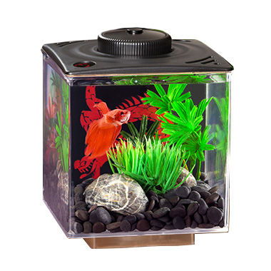 Enter Category Aquariums & Bowls