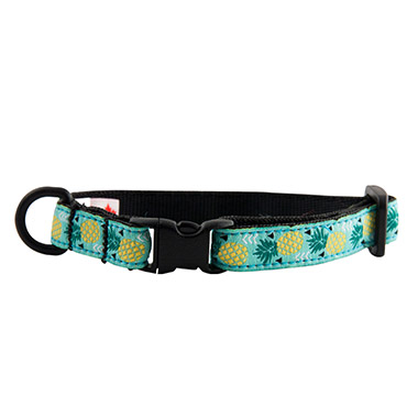 Enter Category Collars & Leashes
