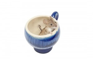Fancy Mouse sitting in tea cup