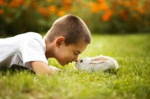 Boy with bunny in grass
