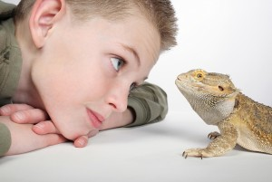child and reptile looking at each other