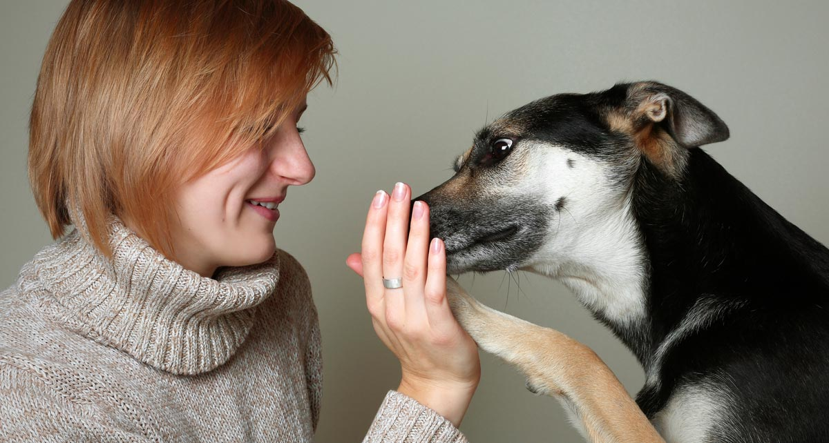 Treats if you please: Knowing the Role of the Treat in Pet Parenting